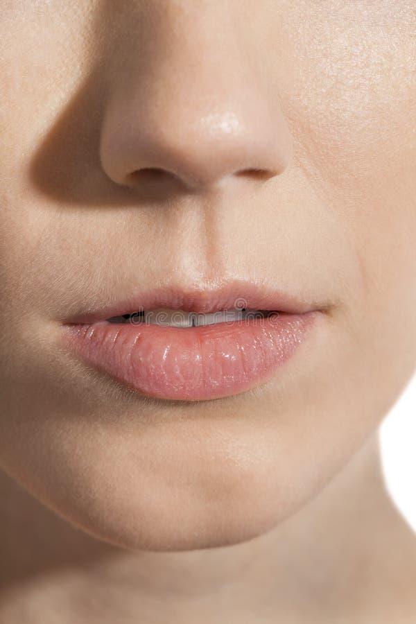 Fermez-vous vers le haut des lèvres et du nez de femme photo libre de droits