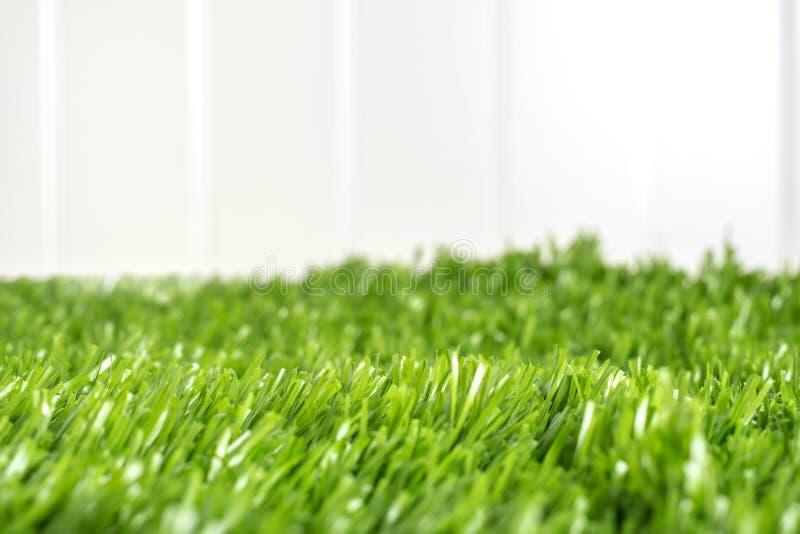 Fermez-vous vers le haut du champ d'herbe verte à la barrière blanche dans l'arrière-cour, jardin, fond de nature images libres de droits