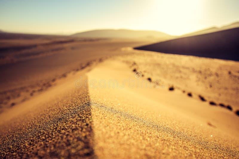 Fermez-vous vers le haut du détail d'une dune de sable rouge dans Sossusvlei près de Sesriem dans le désert de Namib célèbre en N photographie stock