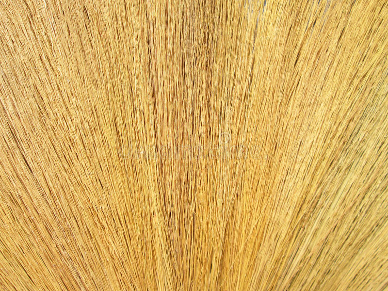 Fermez-vous vers le haut du détail d'une texture de balai Texture grunge d'herbe sèche image stock