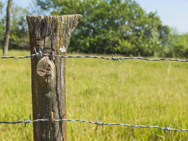 Fermez-vous vers le haut du détail du courrier de barrière de ferme avec le fond de barbelé et d'herbe image stock