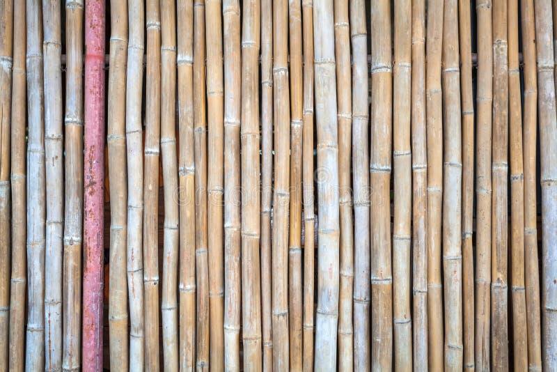 Fermez-vous vers le haut du fond en bambou de barrière photo libre de droits