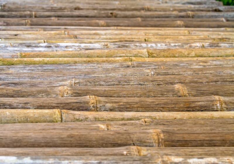 Fermez-vous vers le haut du fond en bambou de barrière, foyer sélectif images stock