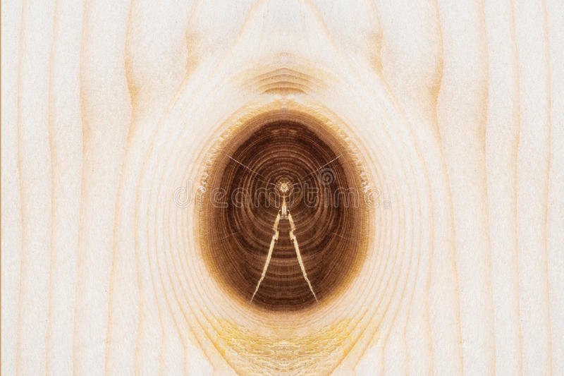 Fermez-vous vers le haut du fond en bois extérieur naturel de texture Desi élégant photographie stock libre de droits
