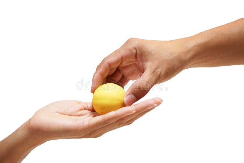 Fermez-vous vers le haut du mâle donnant le citron femelle des mains aux mains sur le fond blanc images libres de droits