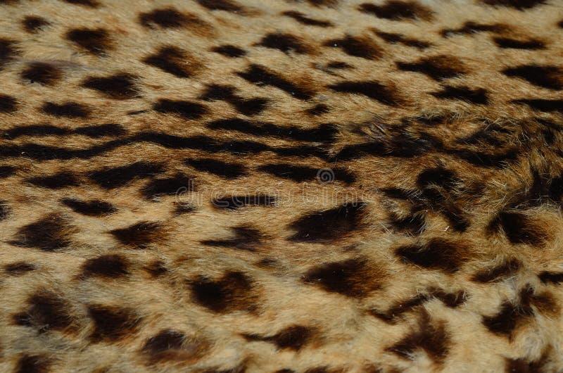 Fermez-vous vers le haut du modèle de la peau de léopard photographie stock