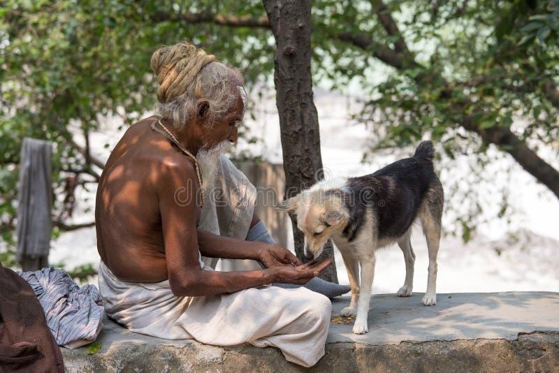 Fermez-vous vers le haut du pauvre homme et du chien l'Inde photographie stock
