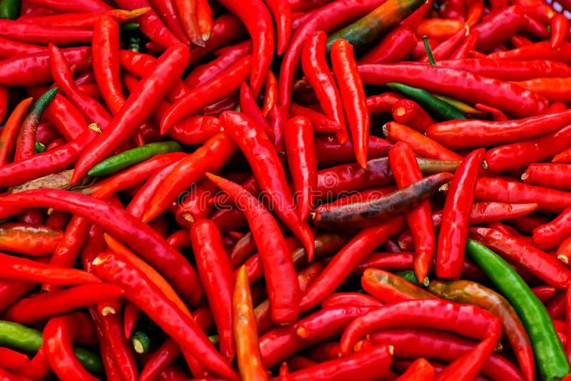 Fermez-vous vers le haut du poivre de piments rouges frais photo libre de droits