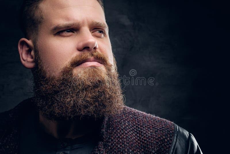 Fermez-vous vers le haut du portrait du mâle barbu brutal images stock