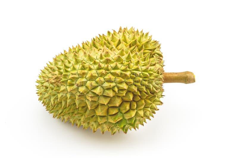 Fermez-vous vers le haut du roi des fruits, durian d'isolement sur le fond blanc photographie stock libre de droits