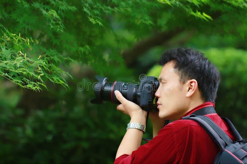Fermez-vous vers le haut du travail chinois d'appareil-photo de prise de photographe d'homme d'Aisan dans l'érable de tir de natu photo libre de droits