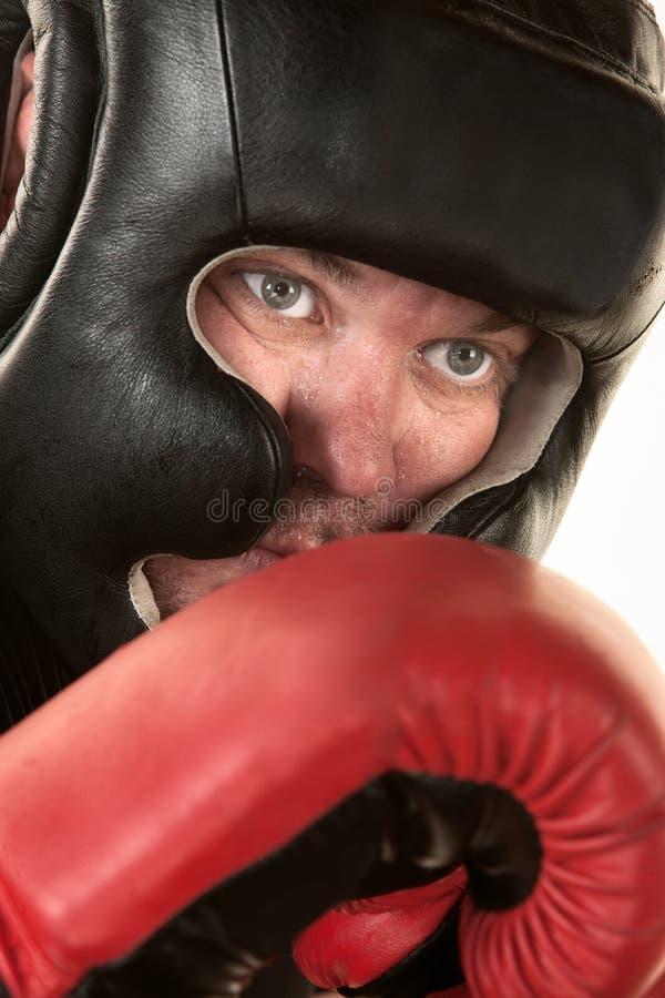 Fermez-vous vers le haut du visage de boxeur photo libre de droits