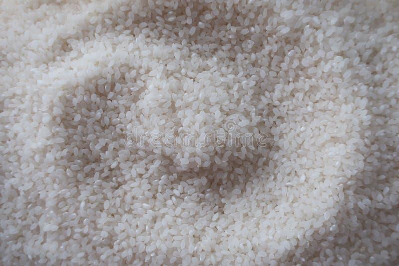 Fermez-vous vers le haut sur le riz photo stock