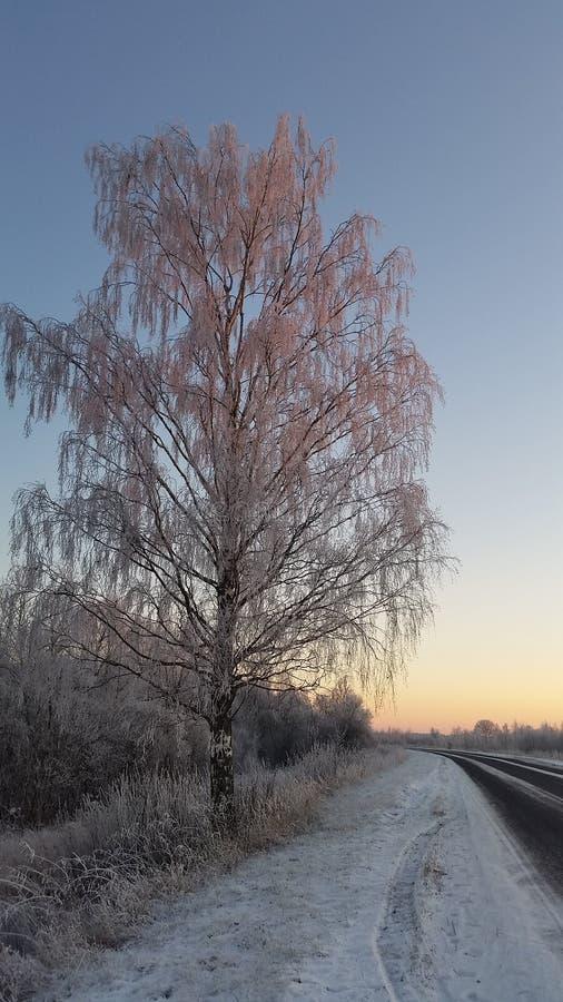 Fermi prego l'inverno immagini stock libere da diritti