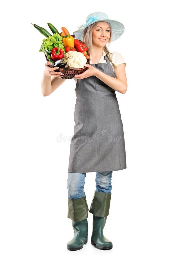 Fermier féminin jugeant un panier plein des légumes image libre de droits
