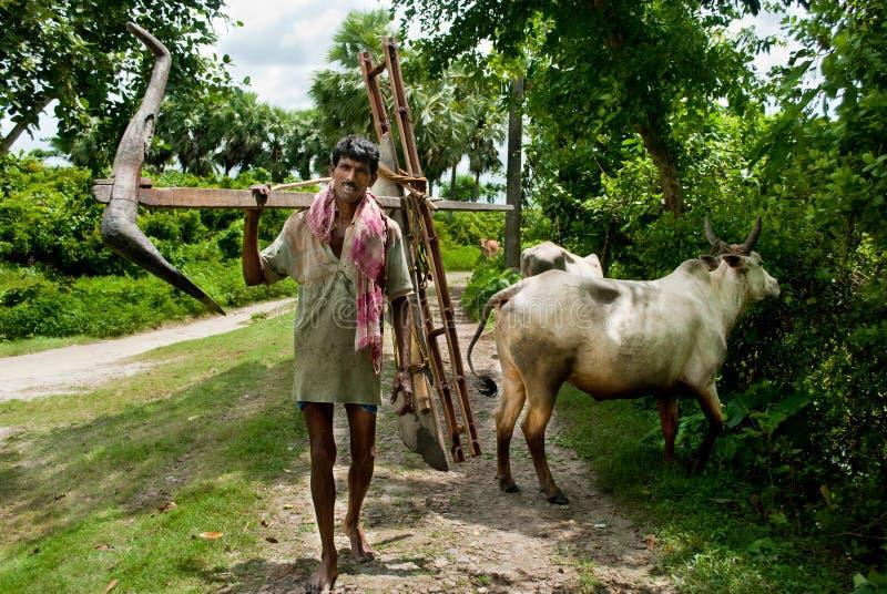 Fermier indien image stock