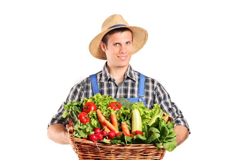 Fermier jugeant un panier plein des légumes photo stock