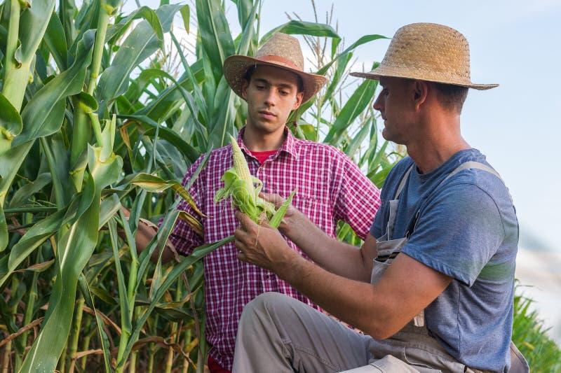 fermiers photos libres de droits