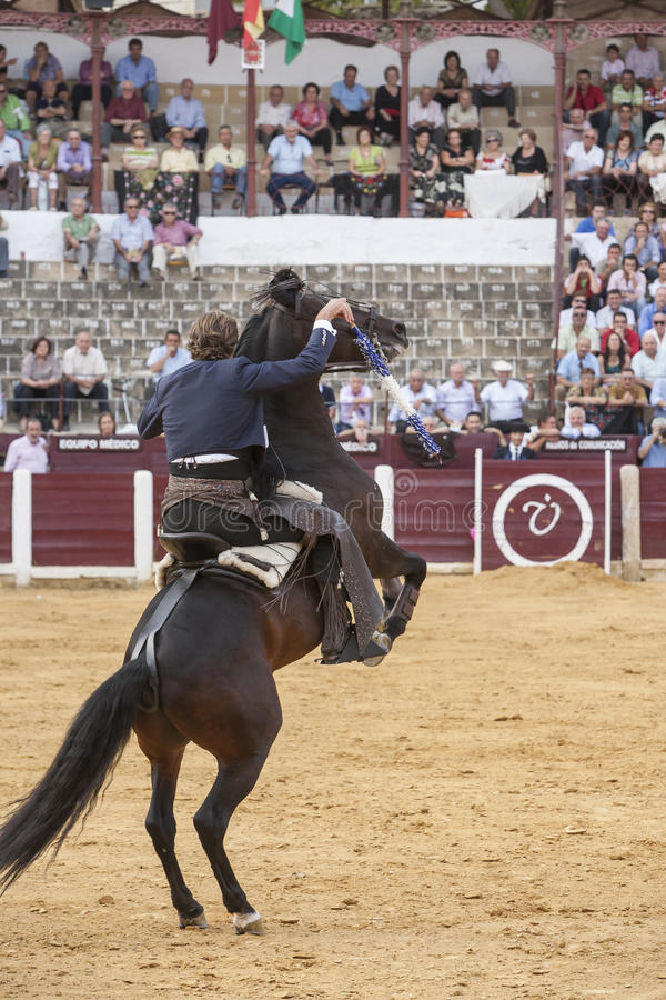 Fermin Bohorquez, bullfighter on horseback spanish, Ubeda, Jaen, Spain. Ubeda, SPAIN - October 2, 2010: Fermin Bohorquez, bullfighter on horseback spanish, in royalty free stock images