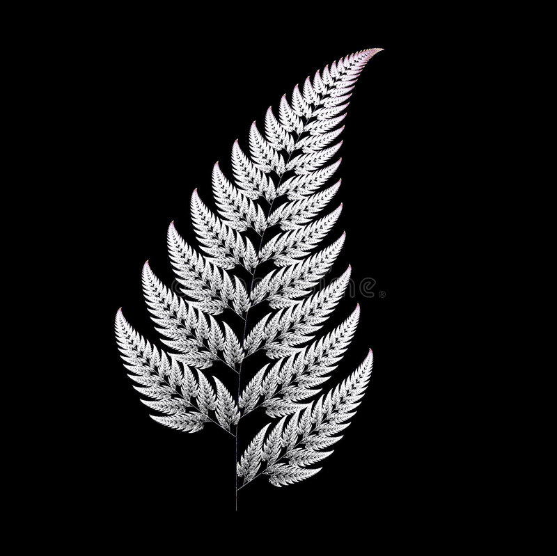 Fern. Fractal design of fern leaf royalty free illustration