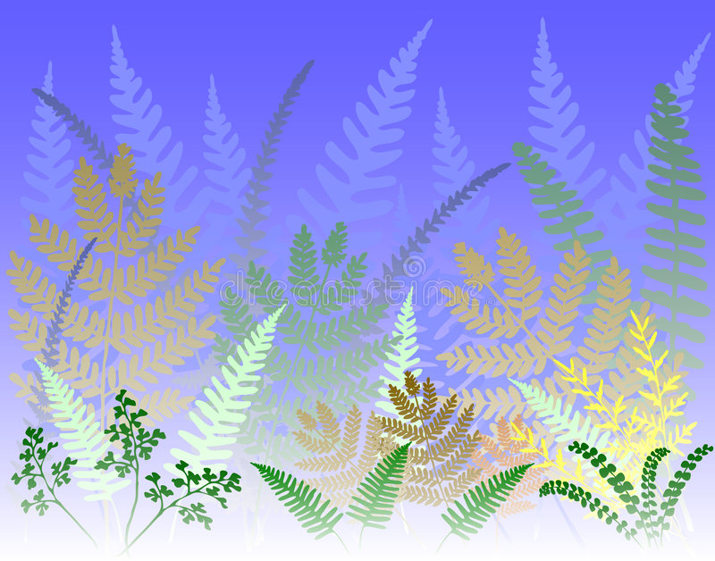 Fern forest. Vector background of colorful fern leaves vector illustration