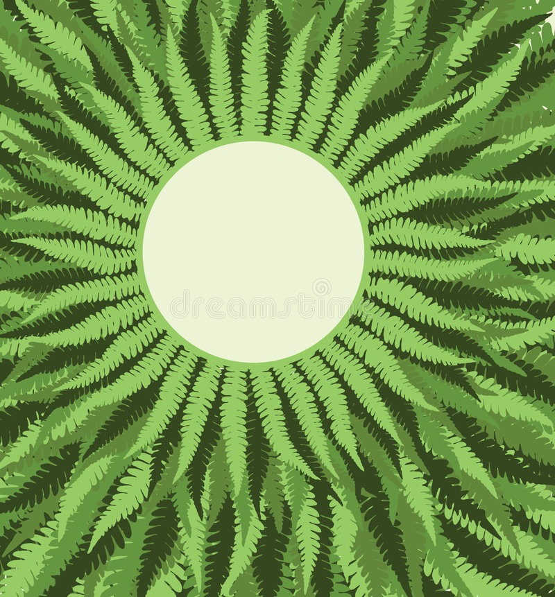 Download Fern Frame Background stock vector. Image of greenery - 3289365