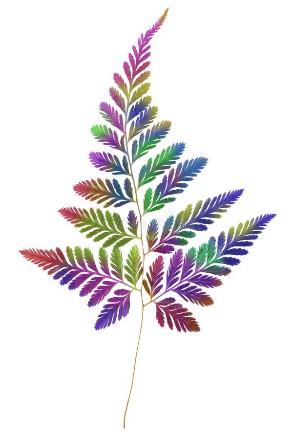 Fern Leaf multicolor stock de ilustración