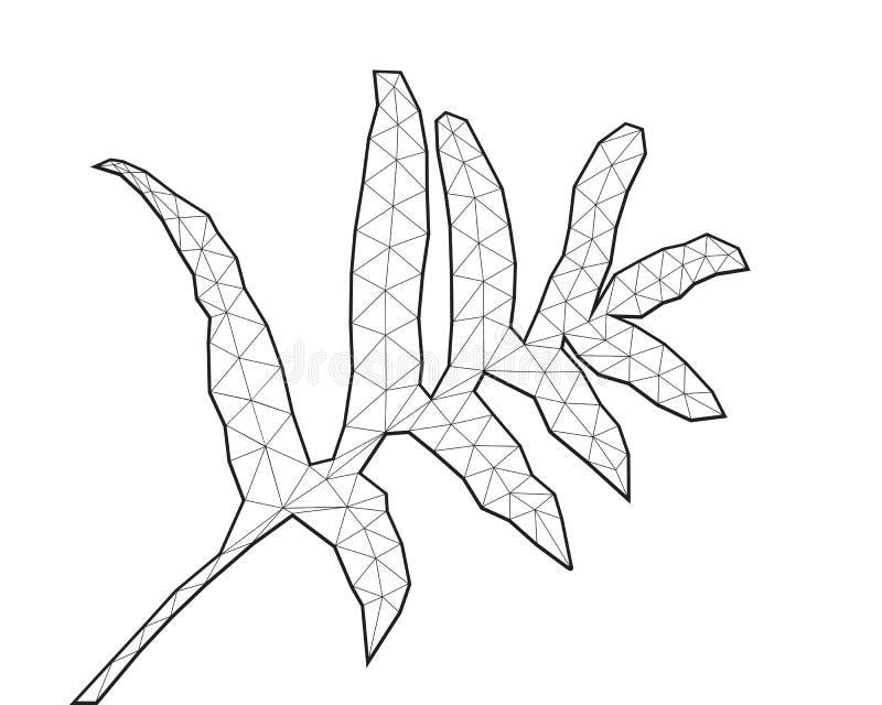 Fern Leaf poligonal, línea arte blanco y negro, ejemplo polivinílico bajo del vector libre illustration