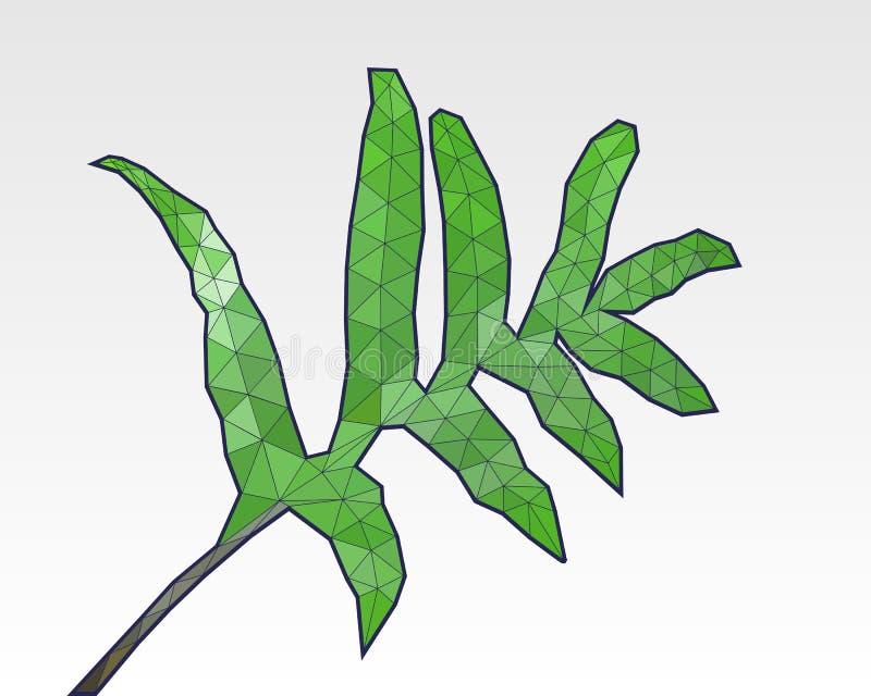 Fern Leaf Vector Illustration polivinílico bajo triangular ilustración del vector
