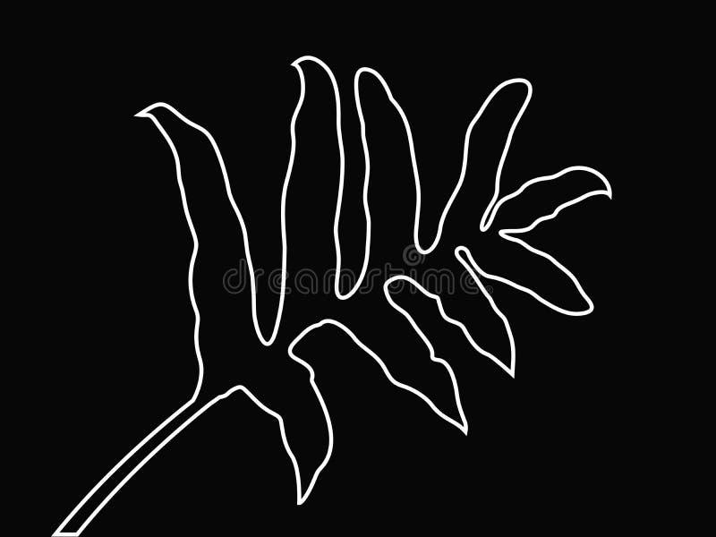 Fern Leaf Vector Outline natural, hojas tropicales de la selva, las hojas blancas alinea a Art Isolated en fondo negro libre illustration
