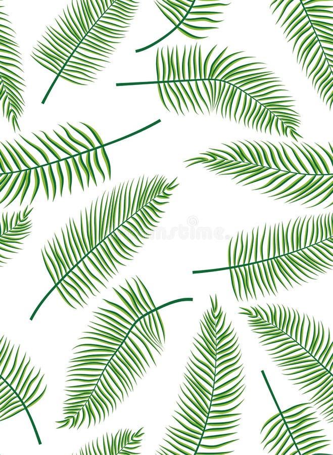 Fern Leaves illustration de vecteur