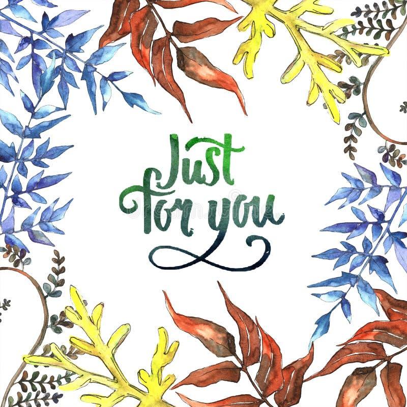 Fern Leaves Follaje floral del jardín botánico de la planta del freno de la hoja Cuadrado del ornamento de la frontera del capítu stock de ilustración