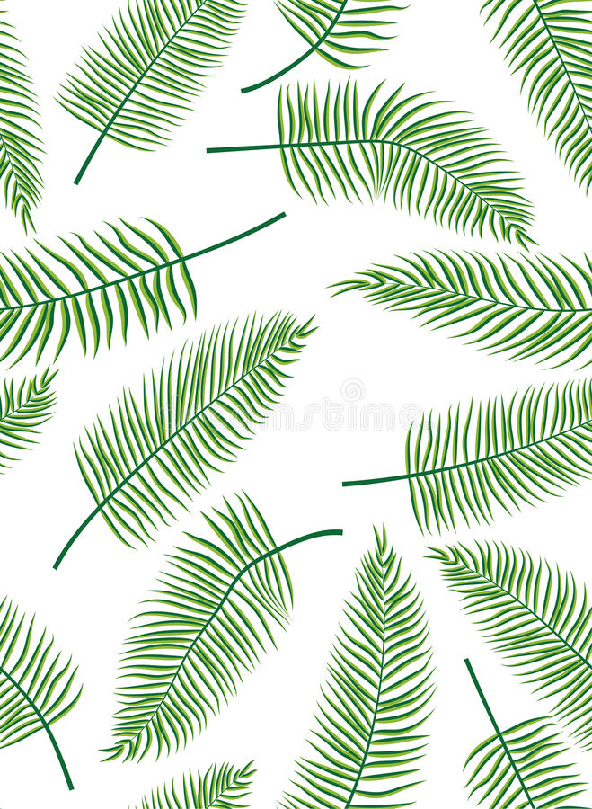 Fern leaves. Seamless background of fern leaves. Vector illustration vector illustration