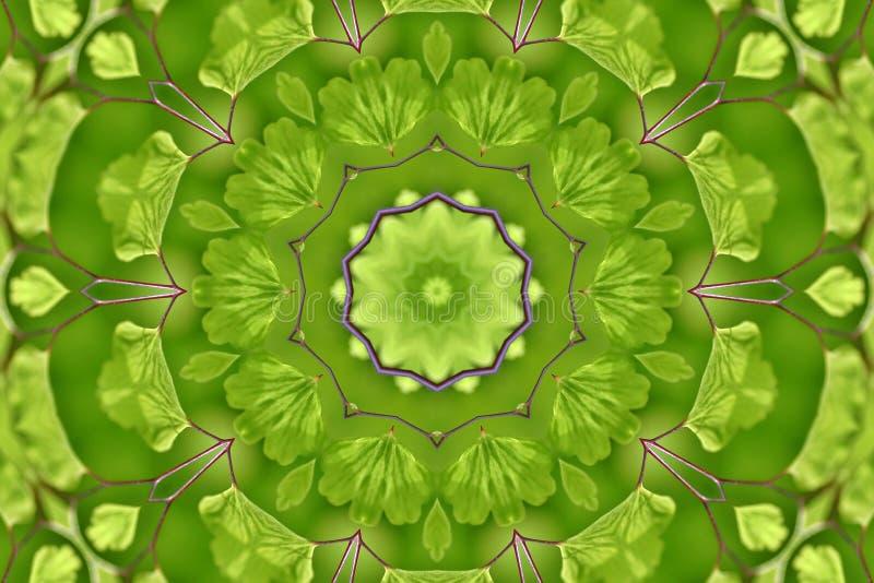 fern ogród abstrakcyjne ilustracji