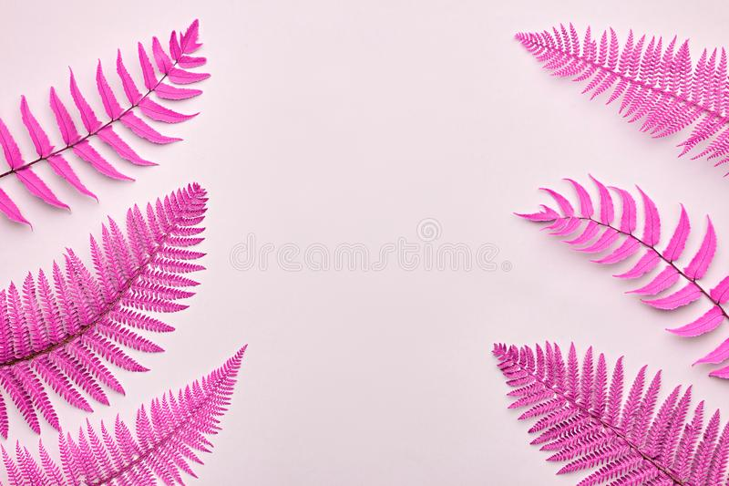 Fern Tropical Leaf. Surreal Nature Pink Background. Fern Tropical Leaf. Neon Floral Leaves Fashion Concept. Vivid Surreal Pink Design. Art Gallery. Creative royalty free stock photo