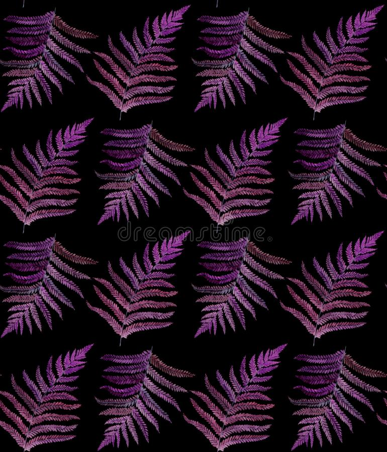 Fern watercolor seamless pattern on black stock photography