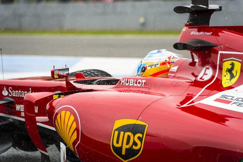 Fernando Alonso fotografia royalty free