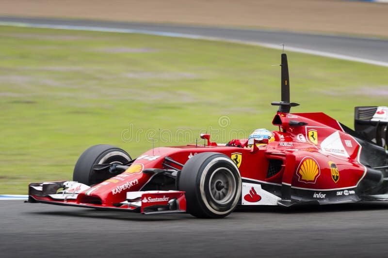 Fernando Alonso fotografia stock