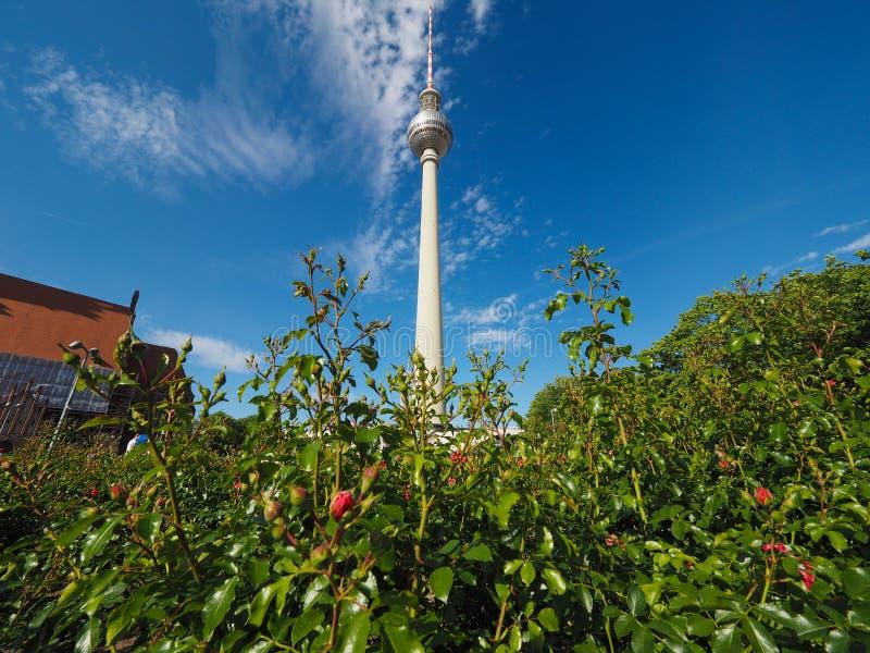 Fernsehturm (torre da tev?) em Berlim fotos de stock