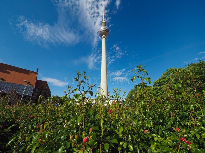 Fernsehturm (torre da tev?) em Berlim imagens de stock