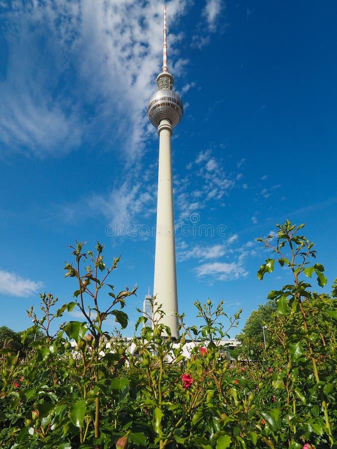 Fernsehturm (torre de televisão) em Berlim imagem de stock royalty free