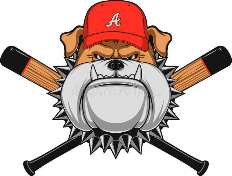 Ferocious Bulldog head. Vector illustration, a fierce bulldog wearing baseball cap, against a white background stock illustration