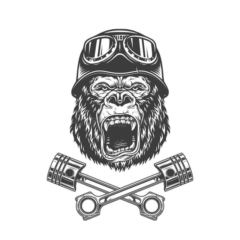 Ferocious gorilla head in biker helmet vector illustration