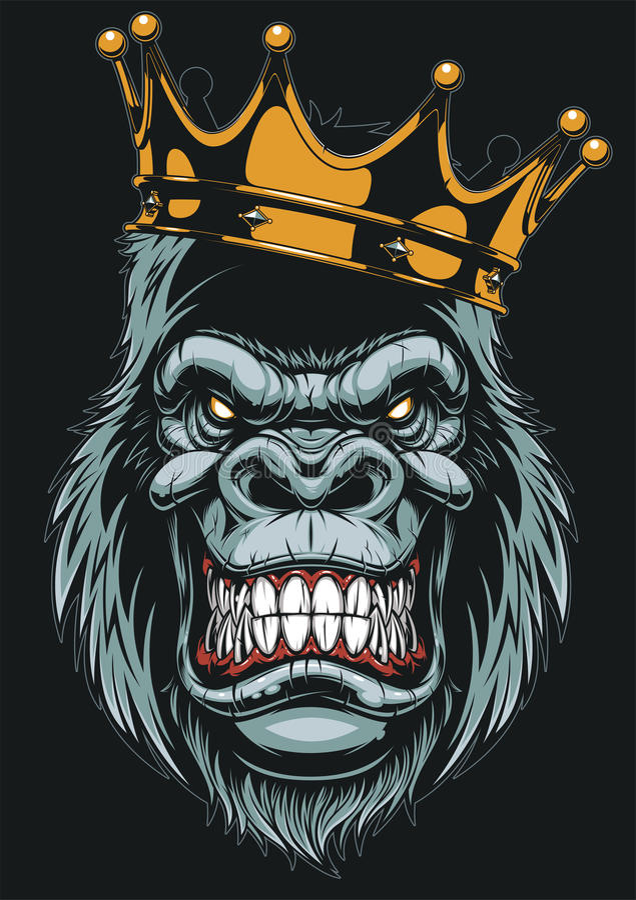 Ferocious gorilla head. Vector illustration, ferocious gorilla head on with crown, on white background royalty free illustration