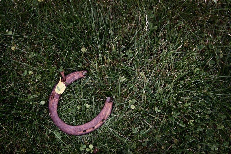 Ferradura oxidada no fundo da grama verde fotos de stock royalty free