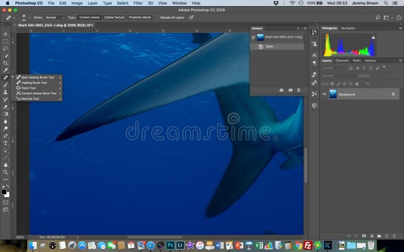 Ferramenta cura da escova do ponto em Photoshop imagens de stock royalty free