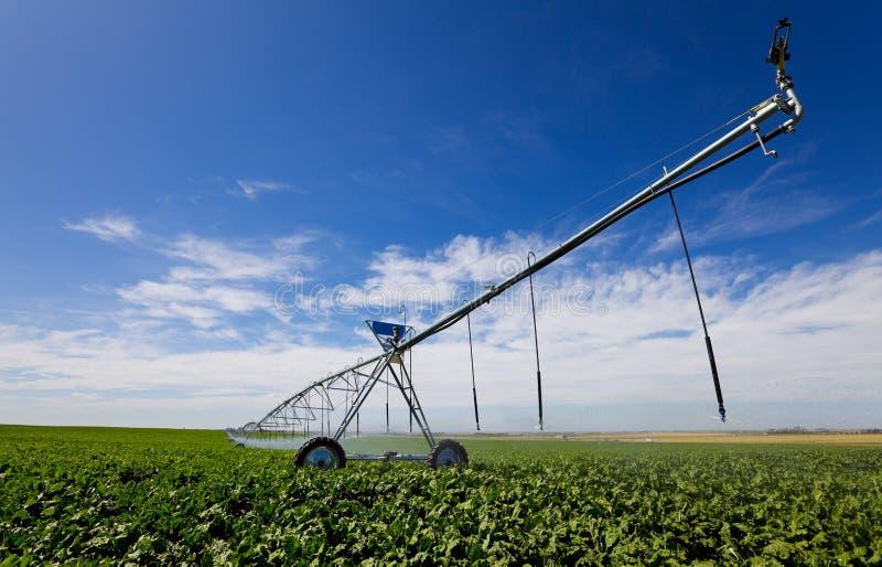 Ferramenta da irrigação fotos de stock royalty free