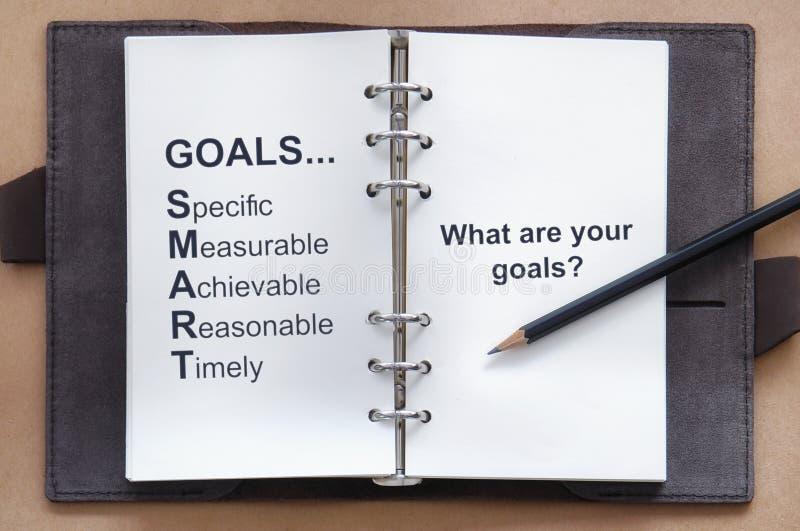 Ferramenta do objetivo do ajuste e o que são suas palavras dos objetivos no livro do organizador com lápis fotografia de stock royalty free