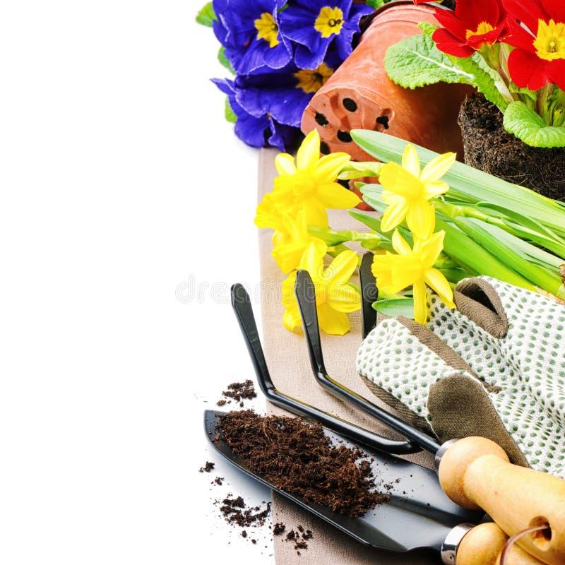 Ferramentas de jardim e flores coloridas imagem de stock