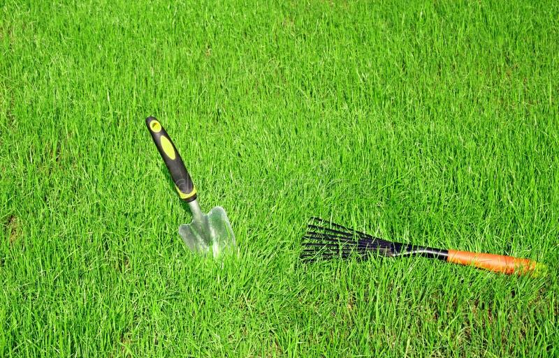 Ferramentas de jardim para o cuidado do gramado fotografia de stock royalty free